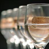 certificazioni, qualità vino, qualità certificazioni