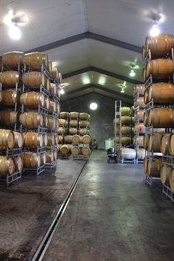 agenti, agenti vendita, lavoro wine tops